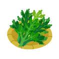 材料(2人分)春菊       100gカニ風味かまぼこ 10gAいりごま    6gAしょうゆ   小さじ1A砂糖     小さじ2/3