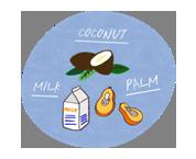 """●MCTオイルとは?● MCTは、Medium Chain Triglyceridesの略で中鎖脂肪酸のことを言います。 油脂は、""""脂肪酸""""が連なって構成されており、その種類や長さによって特性が変わってきます。 一般的な油脂の多くに含まれる""""長鎖脂肪酸""""の半分ほどの長さのものが""""中鎖脂肪酸""""です。長さが短いと、体内ですばやく分解され、短時間でエネルギーになります。 ・中鎖脂肪酸=MCT(ココナッツオイル、パーム核油、牛乳などに含まれています) ・長鎖脂肪酸(なたね油、大豆油などよく使われる植物油に含まれています)"""