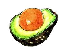 アボガド・・・ 理想的な食物繊維バランスの食材です。不飽和脂肪酸(油分)も多く含まれているので、便の潤滑油の役割も。