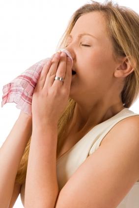 鼻から吸い込まれた花粉が鼻粘膜でアレルギー反応を起すことでくしゃみ・鼻水・鼻づまりの症状が現われます。このため口呼吸、聞き苦しい鼻声になることもあります。本人だけが苦しいばかりか、周りの方にも不快感を与えてしまいます。また、目や喉のかゆみ、結膜の充血、涙が止まらないといった症状もありますし、場合によっては眠気、めまい、頭痛、倦怠感、集中力の低下、イライラ感なども認められます。花粉飛散の時期は長いことから日常生活に支障をきたすだけではなく、精神的にも落ち込んでしまうこともあります。