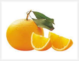 清見(きよみ) 別名:清見オレンジ、清見タンゴール