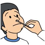 インフルエンザの症状は、市販薬には手に負えないうえ、悪化すると肺炎になる恐れがあります。一方、医師が処方する薬には、ウイルスに直接効くものがあり、早期に治療すれば症状は早くおさまり、重症化を防ぐことができます。ただし、それらの薬が効果を発揮するのは、症状があらわれてから2日以内です。「インフルエンザにかかったかな!?」と思ったら、早めに医師の診察を受けましょう。