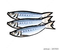 食事の偏りは体の免疫力を弱める原因のひとつ。特に青魚に多く含まれるEPA(エイコサペンタエン酸)は、アレルギーによる鼻づまりをやわらげるともいわれているので、たくさん食べたいものです。