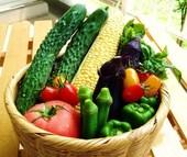 最盛期の夏を迎えました。厳しい暑さが続き、体力の消耗が激しくなります。こんな時に食べたいのは、カラフルな夏野菜達です!夏野菜は、強い日差しを浴びて成長します。その紫外線による酸化から身を守るために、植物は「フィトケミカル」という成分を持っています。「フィトケミカル」は食事を通して摂取することで、私たちの体を酸化から守ってくれるのです!